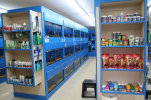 Welcome to the Bruce's Pond Shop & Aquatic Treasures Web Site